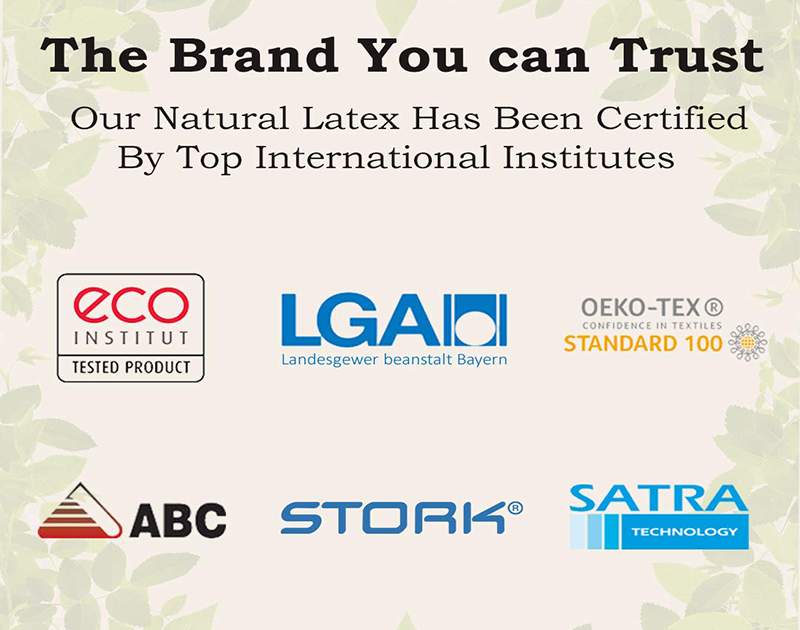 """100% Natural Latex Certified Organic Pillow ( Size - 24"""" x 16"""" Inches )"""