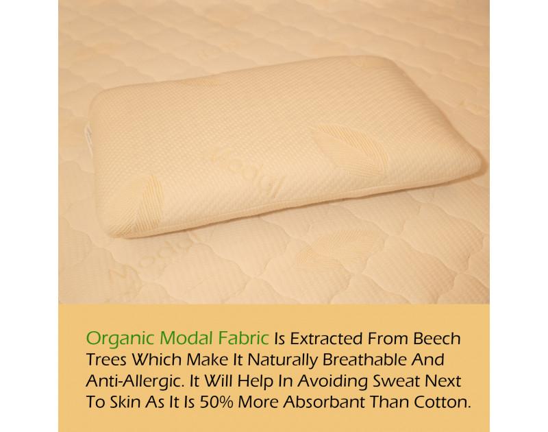 Dreamzee 100% Natural Latex Certified Organic Pillow