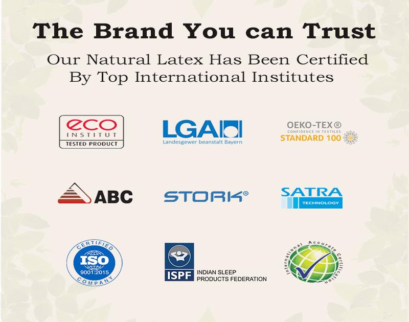 Dreamzee 100% Natural Latex Plus Memory Foam Hybrid Mattress - Medium Soft Comfort